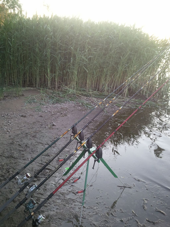 Фидерная тренога трипод под четыре удилища, подарок рыбаку